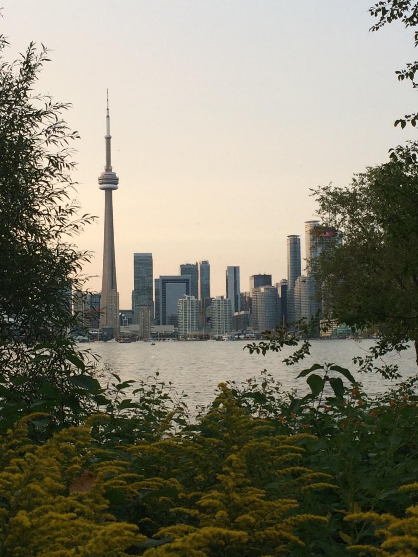 Toronto (36)