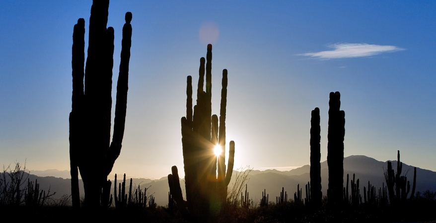 visit-mexico_slider-home
