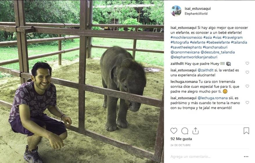 elefante 2.jpg
